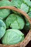 λάχανο καλαθιών Στοκ Φωτογραφία