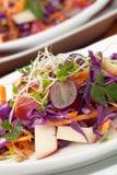 Λάχανο, καρότο, και σαλάτα της Apple Στοκ φωτογραφίες με δικαίωμα ελεύθερης χρήσης