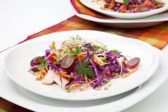 Λάχανο, καρότο, και σαλάτα της Apple Στοκ φωτογραφία με δικαίωμα ελεύθερης χρήσης