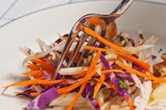 Λάχανο, καρότο, και Apple Slaw με το κοτόπουλο Στοκ Φωτογραφίες