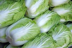 λάχανο κινέζικα Στοκ εικόνα με δικαίωμα ελεύθερης χρήσης