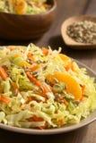 Λάχανο κραμπολάχανου, καρότο, σέλινο και πορτοκαλιά σαλάτα Στοκ Φωτογραφία