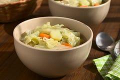 Λάχανο κραμπολάχανου, καρότο, Stew πατατών Στοκ Εικόνα