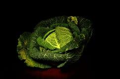 Λάχανο κραμπολάχανου στην ελαφριά ζωγραφική Στοκ εικόνες με δικαίωμα ελεύθερης χρήσης