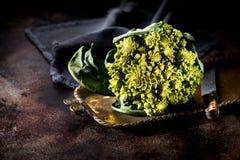 Λάχανο μπρόκολου Romanesco Στοκ εικόνες με δικαίωμα ελεύθερης χρήσης