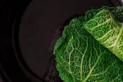 λάχανο που γεμίζεται Στοκ Εικόνες