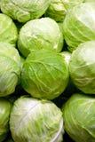 λάχανο πράσινο Στοκ Φωτογραφίες