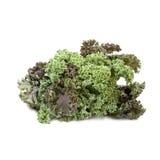 Λάχανο του Kale που απομονώνεται Στοκ εικόνες με δικαίωμα ελεύθερης χρήσης