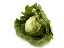 λάχανο φρέσκο Στοκ φωτογραφία με δικαίωμα ελεύθερης χρήσης