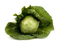 λάχανο φρέσκο Στοκ εικόνες με δικαίωμα ελεύθερης χρήσης