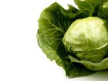 λάχανο φρέσκο Στοκ Εικόνα