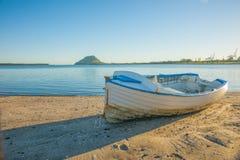 Λέμβος στη λιμενική παραλία Tauranga στοκ εικόνες με δικαίωμα ελεύθερης χρήσης