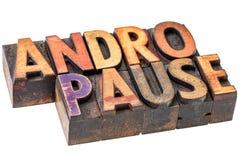Λέξη Andropause στον ξύλινο τύπο Στοκ Εικόνες