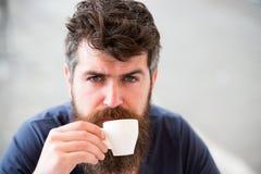 λήψη ατόμων έννοιας καφέ σπασιμάτων Το άτομο με τη μακριά γενειάδα φαίνεται ήρεμο και χαλαρωμένο Άτομο με τη γενειάδα και mustach Στοκ Φωτογραφίες