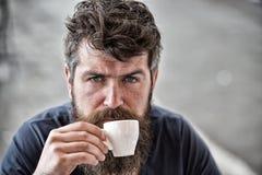 λήψη ατόμων έννοιας καφέ σπασιμάτων Το άτομο με τη μακριά γενειάδα φαίνεται ήρεμο και χαλαρωμένο Το γενειοφόρο άτομο κρατά το φλυ Στοκ εικόνες με δικαίωμα ελεύθερης χρήσης