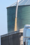 λήψη φορτηγών σιταριού Στοκ Εικόνα