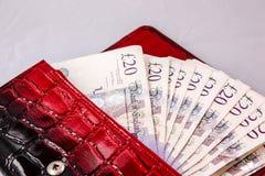 20 λίβρες μετρητών για την αποταμίευση σε ένα κόκκινο πορτοφόλι στοκ φωτογραφίες