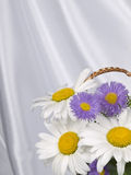 λίγα λουλούδια Στοκ Φωτογραφία