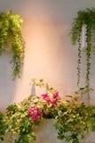 Λίγα πράσινες εγκαταστάσεις και λουλούδια στον τοίχο Στοκ εικόνα με δικαίωμα ελεύθερης χρήσης