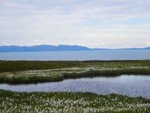 Λίγη λίμνη Στοκ εικόνες με δικαίωμα ελεύθερης χρήσης
