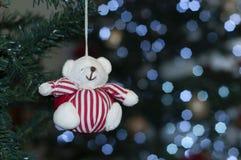 Λίγη αρκούδα στο δέντρο με το διάστημα για να γράψει το μήνυμα Χριστουγέννων στοκ εικόνες