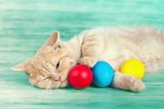 Λίγη γάτα που βρίσκεται κοντά στα χρωματισμένα αυγά Στοκ εικόνα με δικαίωμα ελεύθερης χρήσης