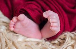 Λίγη κινηματογράφηση σε πρώτο πλάνο ποδιών μωρών Στοκ Εικόνες