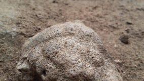 Λίγη πέτρα Στοκ εικόνα με δικαίωμα ελεύθερης χρήσης