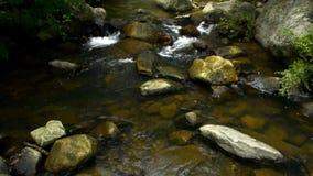 Λίγη ροή ποταμών Λα Miel φιλμ μικρού μήκους