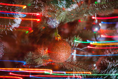 Λίγη σφαίρα στο χριστουγεννιάτικο δέντρο Στοκ Εικόνες