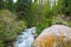 Λίγος άγριος ποταμός βουνών, Κιργιστάν Στοκ Φωτογραφίες