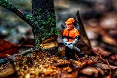 Λίγος κόπτης δέντρων στοκ φωτογραφία με δικαίωμα ελεύθερης χρήσης