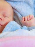 Λίγος νεογέννητος ύπνος μωρών ήρεμα στο κάλυμμα Στοκ φωτογραφίες με δικαίωμα ελεύθερης χρήσης