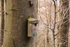 Λίγος πίνακας πουλιών σε ένα μεγάλο παλαιό δέντρο Στοκ φωτογραφίες με δικαίωμα ελεύθερης χρήσης