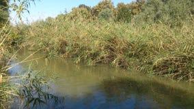 Λίγος ποταμός στοκ φωτογραφίες με δικαίωμα ελεύθερης χρήσης