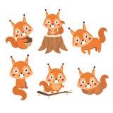 Λίγος χαριτωμένος σκίουρος σε διαφορετικό θέτει διανυσματική απεικόνιση