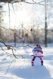 Λίγος χιονάνθρωπος στο καπέλο στο πάρκο Στοκ φωτογραφία με δικαίωμα ελεύθερης χρήσης