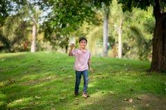 Λίγο έγγραφο αεροπλάνων παιχνιδιού αγοριών αμφιθαλών στο πάρκο υπαίθριο Στοκ Φωτογραφία