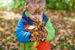 Λίγο αγόρι μικρών παιδιών που έχει τη διασκέδαση στο πάρκο φθινοπώρου Στοκ φωτογραφία με δικαίωμα ελεύθερης χρήσης