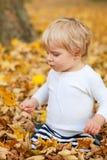 Λίγο αγόρι μικρών παιδιών που παίζει στο πάρκο φθινοπώρου Στοκ Φωτογραφία