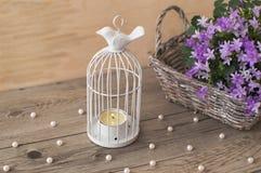 Λίγο ανοικτό γκρι ψάθινο καλάθι με το όμορφο portenschlagiana Campanula Στοκ φωτογραφία με δικαίωμα ελεύθερης χρήσης