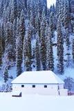 Λίγο δάσος χιονιού σπιτιών το χειμώνα Στοκ φωτογραφία με δικαίωμα ελεύθερης χρήσης
