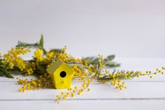 Λίγο κίτρινο birdhouse με το mimosa διακλαδίζεται στη λευκιά ξύλινη ΤΣΕ Στοκ Φωτογραφίες