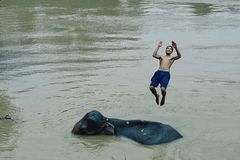 λίγο καιρό διασκέδασης μετά από το mahout έπλυνε τον ελέφαντά του στο mekong ποταμό στοκ φωτογραφίες