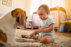 Λίγο κοριτσάκι με το σκυλί λαγωνικών σε ένα πάτωμα στο σπίτι στοκ φωτογραφία με δικαίωμα ελεύθερης χρήσης