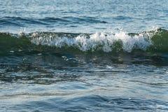 Λίγο κύμα στη θάλασσα στοκ εικόνα