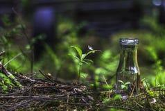 Λίγο μπουκάλι νερό και άσπρο λουλούδι Στοκ φωτογραφία με δικαίωμα ελεύθερης χρήσης