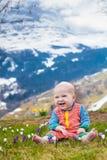 Λίγο μωρό που παίζει με τον κρόκο ανθίζει στα βουνά Άλπεων Στοκ Εικόνα