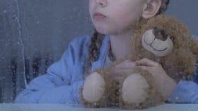 Λίγο μόνο αγκάλιασμα κοριτσιών teddy αντέχει πίσω από το βροχερό παράθυρο, περιμένοντας τους γονείς απόθεμα βίντεο