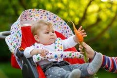 Λίγο ξανθό αγόρι παιδιών που δίνει ένα καρότο στην αδελφή μωρών Ευτυχείς αμφιθαλείς που έχουν το υγιές πρόχειρο φαγητό Συνεδρίαση Στοκ Εικόνες